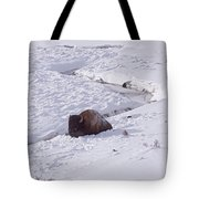 Buffalo In Snow   #6872 Tote Bag