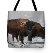 Buffalo In Snow Tote Bag