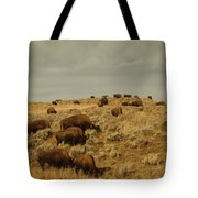 Buffalo On The Prairie Tote Bag