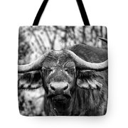 Buffalo Stare In Black And White Tote Bag