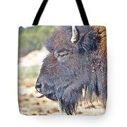 Buffalo Tongue Tote Bag