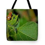 Bug On Leaf Tote Bag