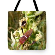 Bug On Stalk Of The Wooly Mullein Tote Bag
