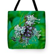 Bug On Wild Mint On Great Glacier Trail In Glacier National Park-british Columbia  Tote Bag
