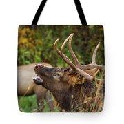 Bugling Bull Elk Tote Bag