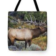 Bugling Bull Tote Bag by Mark Kiver