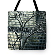 Building Reflection And Tree Tote Bag