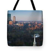 Buildings In A City, Boston Common Tote Bag