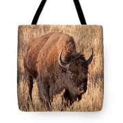 Bull Bison Running In Yellowstone National Park Tote Bag