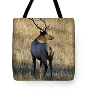 Bull Elk Surveying His Harem Tote Bag by Bruce Gourley