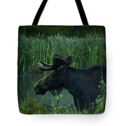 Bull Moose   #5701 Tote Bag