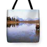 Bull Moose Grand Teton National Park Wy Tote Bag