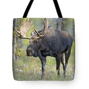 Bull Moose IIIIi Tote Bag
