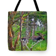 Bull Moose In Cape Breton Highlands Np-ns Tote Bag