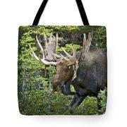 Bull Moose Shedding Velvet Tote Bag