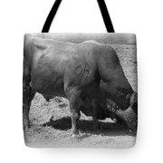 Bull Number 07 Tote Bag by Daniel Hagerman