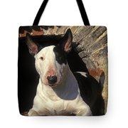 Bull Terrier Dog Tote Bag