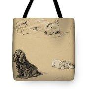 Bull-terrier, Spaniel And Sealyhams Tote Bag