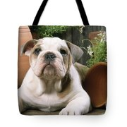 Bulldog Puppy With Flowerpots Tote Bag