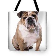 Bulldog Sitting Tote Bag