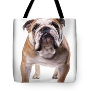 Bulldog Standing, Facing Camera Tote Bag