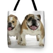 Bulldogs, Male And Female Tote Bag
