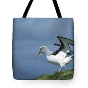 Bullers Albatross Spreading Wings Tote Bag
