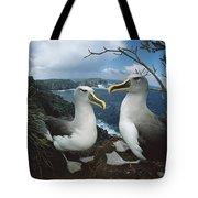 Bullers Albatrosses On Storm-lashed Tote Bag