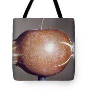 Bullet Piercing An Apple Tote Bag by Gary S. Settles