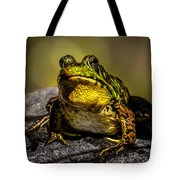 Bullfrog Watching Tote Bag