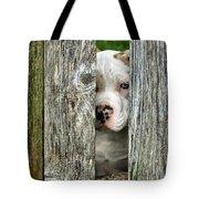 Bull's Eye - English Bulldog Tote Bag