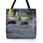 Bulls In The Meadow Tote Bag
