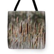 Bulrushes Tote Bag