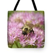 Bumble Bee On A Century Plant Tote Bag