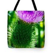 Bumble Bee On Bull Thistle Plant  Tote Bag