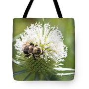 Bumble Bee On Button Bush Flower Tote Bag