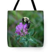 Bumble Bee On Red Clover  Tote Bag