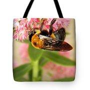 Bumblebee Clinging To Sedum Tote Bag