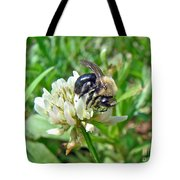 Bumblebee On White Clover Tote Bag