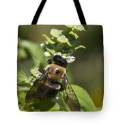 Bumblebees And Basil Tote Bag