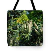 Bumper Cone Crop Tote Bag