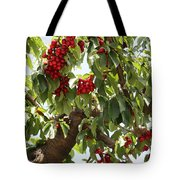 Bumper Crop - Cherries Tote Bag