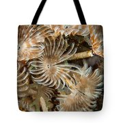 Bunch Of Dusters Tote Bag by Jean Noren