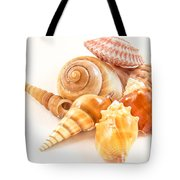 Bunch Of Shells Tote Bag