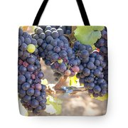 Bunches Of Red Wine Grapes Tote Bag