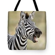 Burchells Zebra Equus Quagga Burchellii Tote Bag