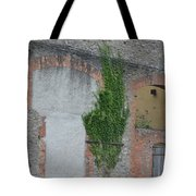 Window With Ivy Tote Bag