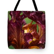 Burgundy Blossom Tote Bag