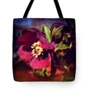 Burgundy Hellebore Flower Tote Bag