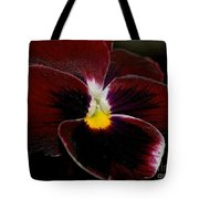 Burgundy Pansy  Tote Bag